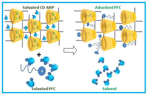 Nano-Sized Cyclodextrin-Based Molecularly Imprinted Polymer Adsorbents for Perfluorinated Compounds—A Mini-Review