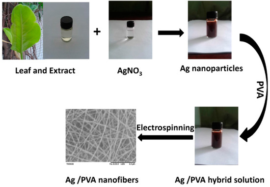 A Sustainable Approach to Fabricating Ag Nanoparticles-PVA Hybrid Nanofiber and Its Catalytic Activity