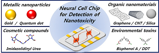 Neural Cell Chip Based Electrochemical Detection of Nanotoxicity