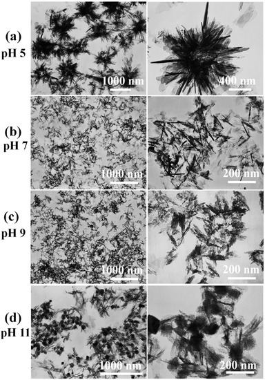 Microwave-Assisted Hydrothermal Rapid Synthesis of Calcium Phosphates: Structural Control and Application in Protein Adsorption