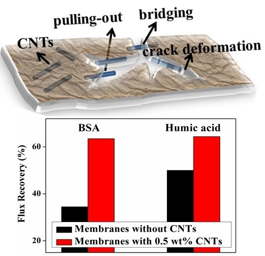 Carbon Nanotube-Alumina-Polyethersulfone Hybrid Hollow Fiber Membranes with Enhanced Mechanical and Anti-Fouling Properties