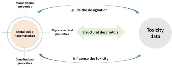 Metal Oxide Nanomaterial QNAR Models: Available Structural Descriptors and Understanding of Toxicity Mechanisms