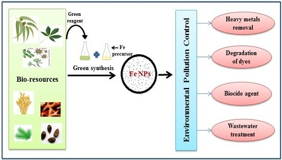Nanomaterials   Free FullText   Green Synthesis of Iron Nanoparticles and Their Environmental