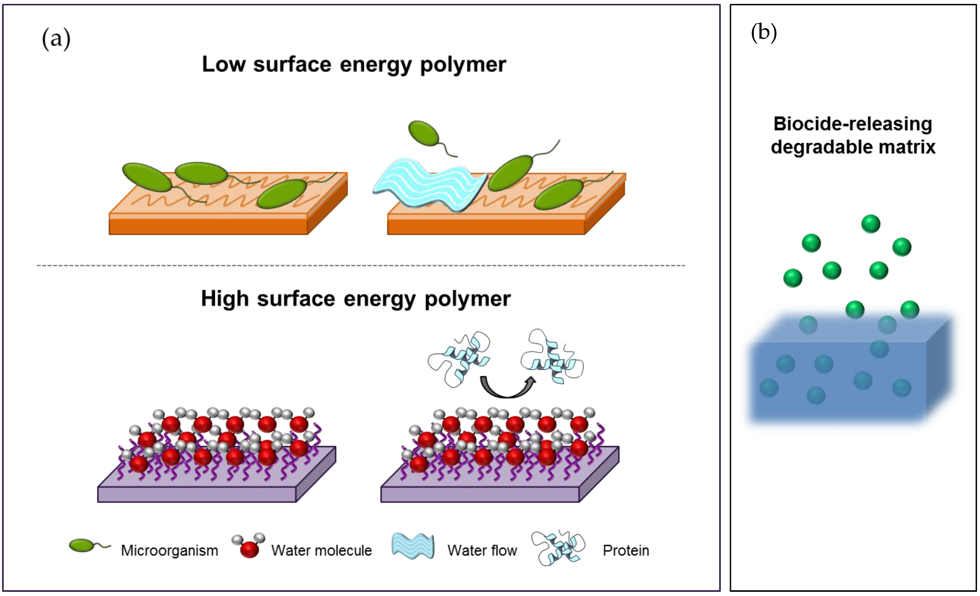 Nanomaterials Free Full Text Antimicrobial Polymers In