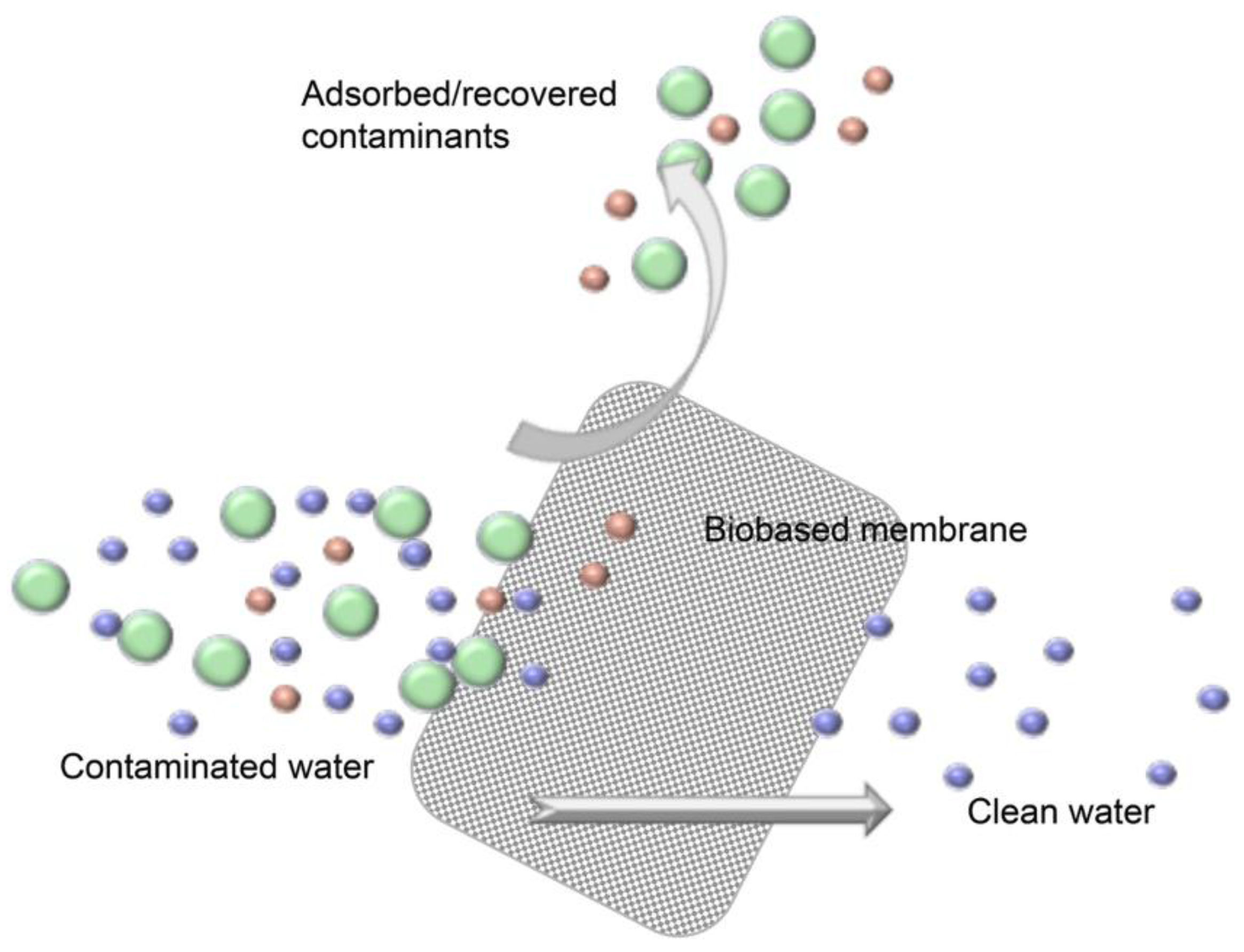 Nanomaterials Free Full Text Nanocellulose Based