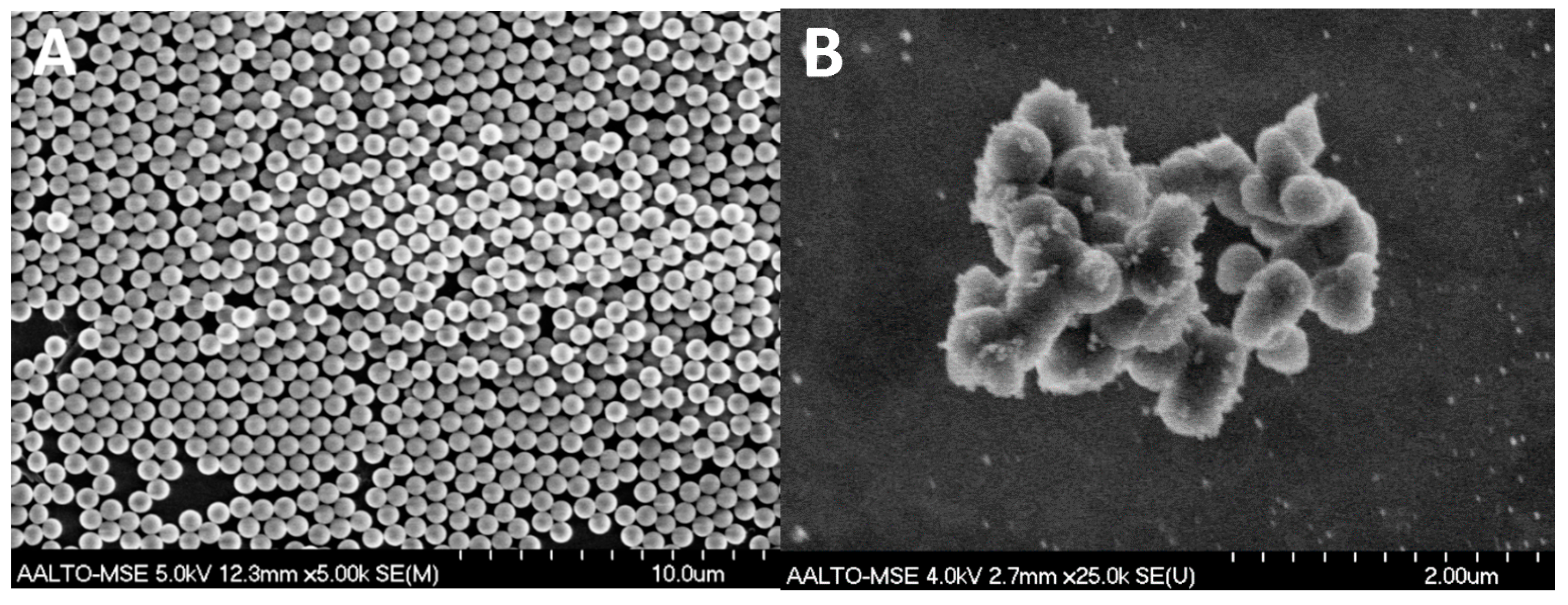Bacterial Resistance Silver