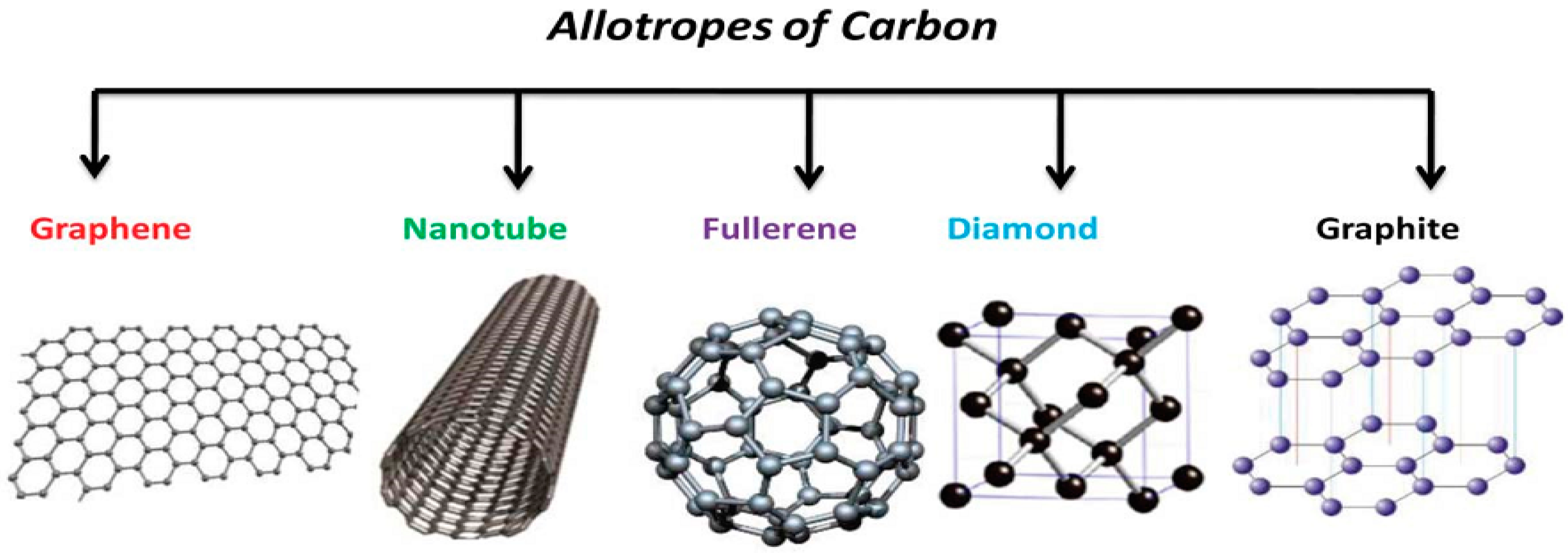 allotropes of carbon essay Prominent elements & compounds carbon & its compounds catenation self-linking property to form a long chain carbon black soot.