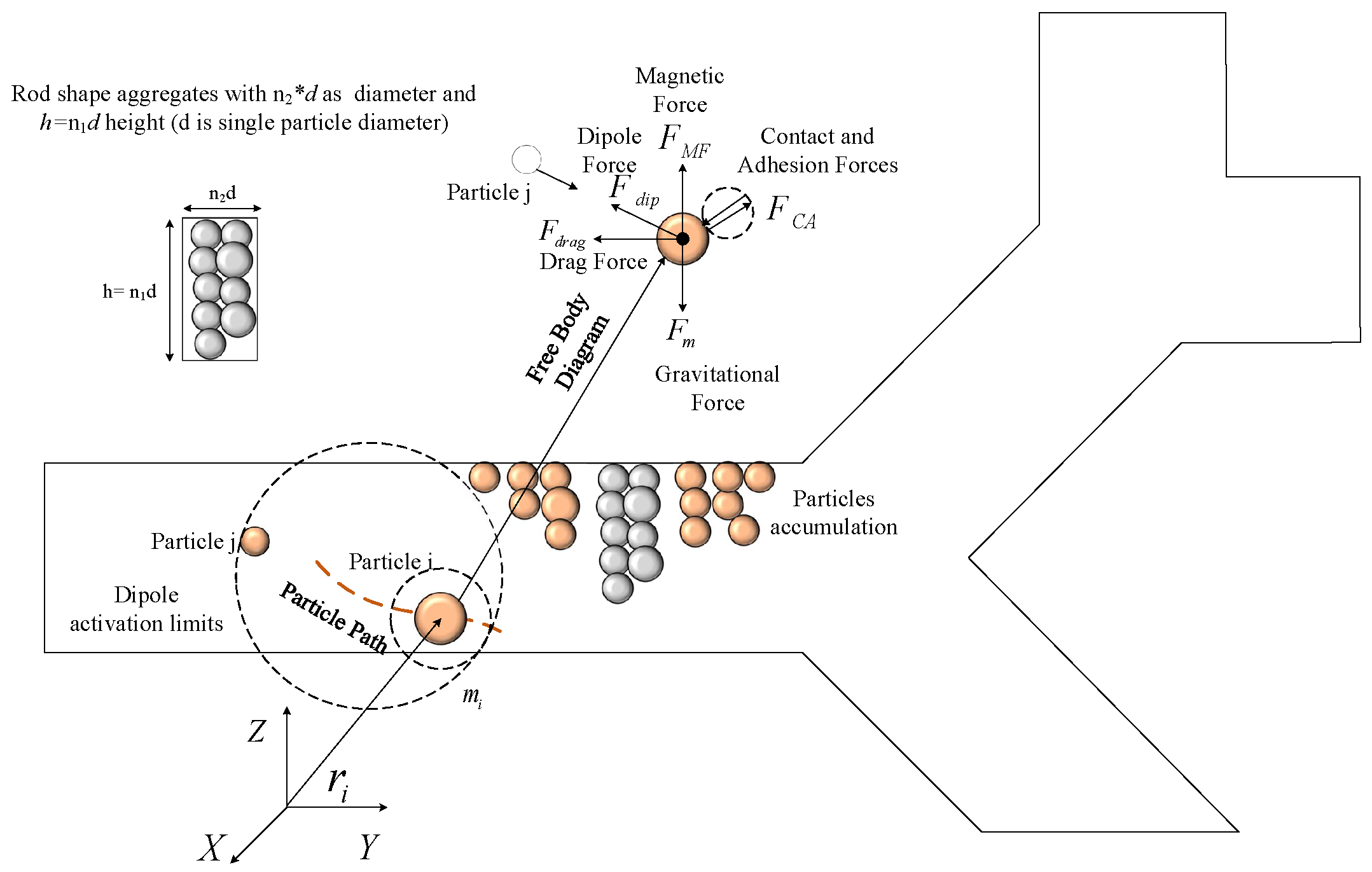 Nanomaterials Free Full Text A Novel Magnetic Actuation Scheme In Any Case The Body Diagram And 2d Dynamic Analysis Is Shown 08 00003 G002