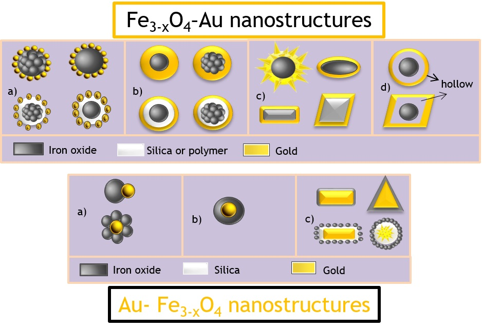 Nanomaterials Free Full Text Iron Oxide And Gold Based Magneto