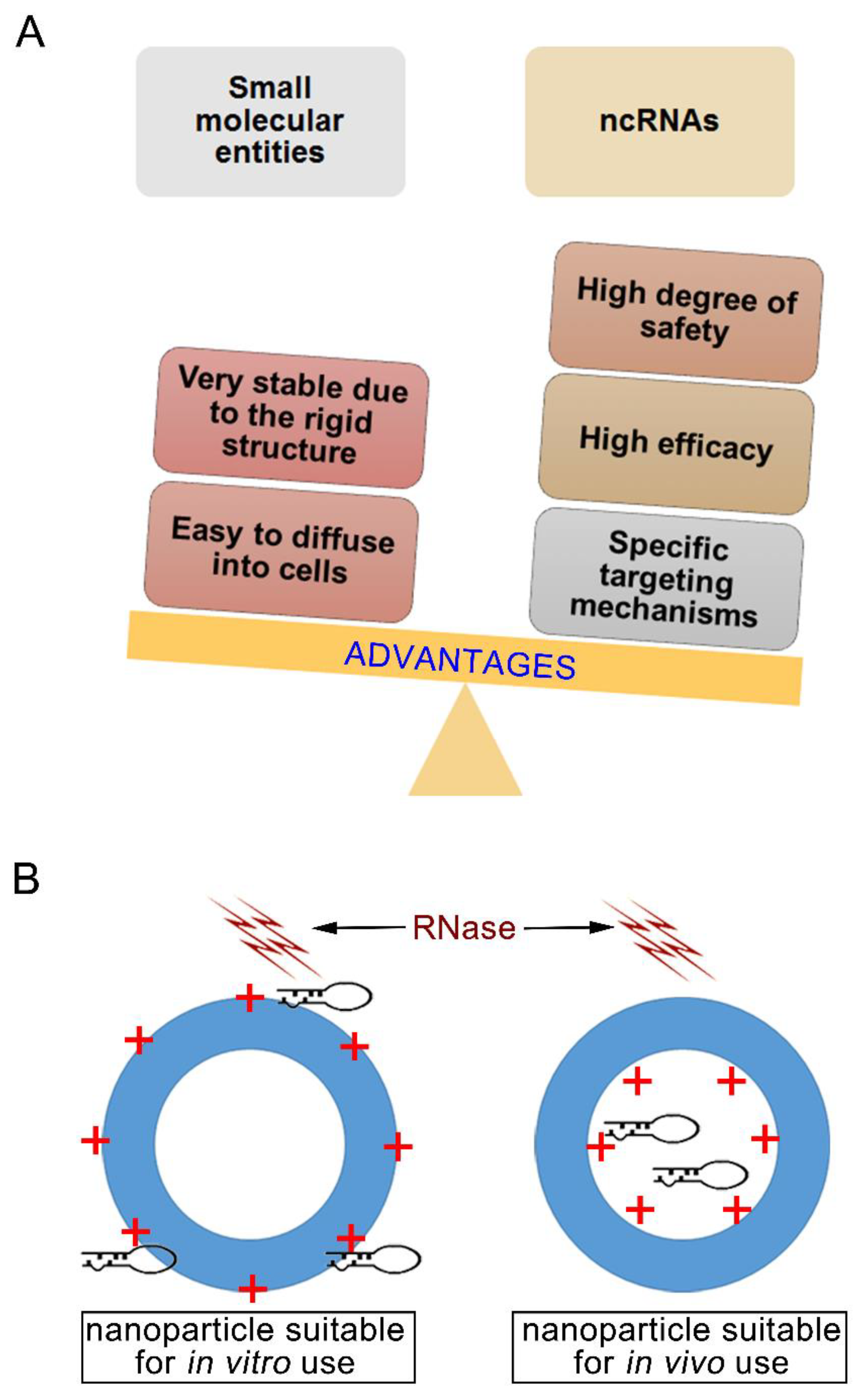 Nanomaterials   Free Full-Text   Nanoparticle-Mediated