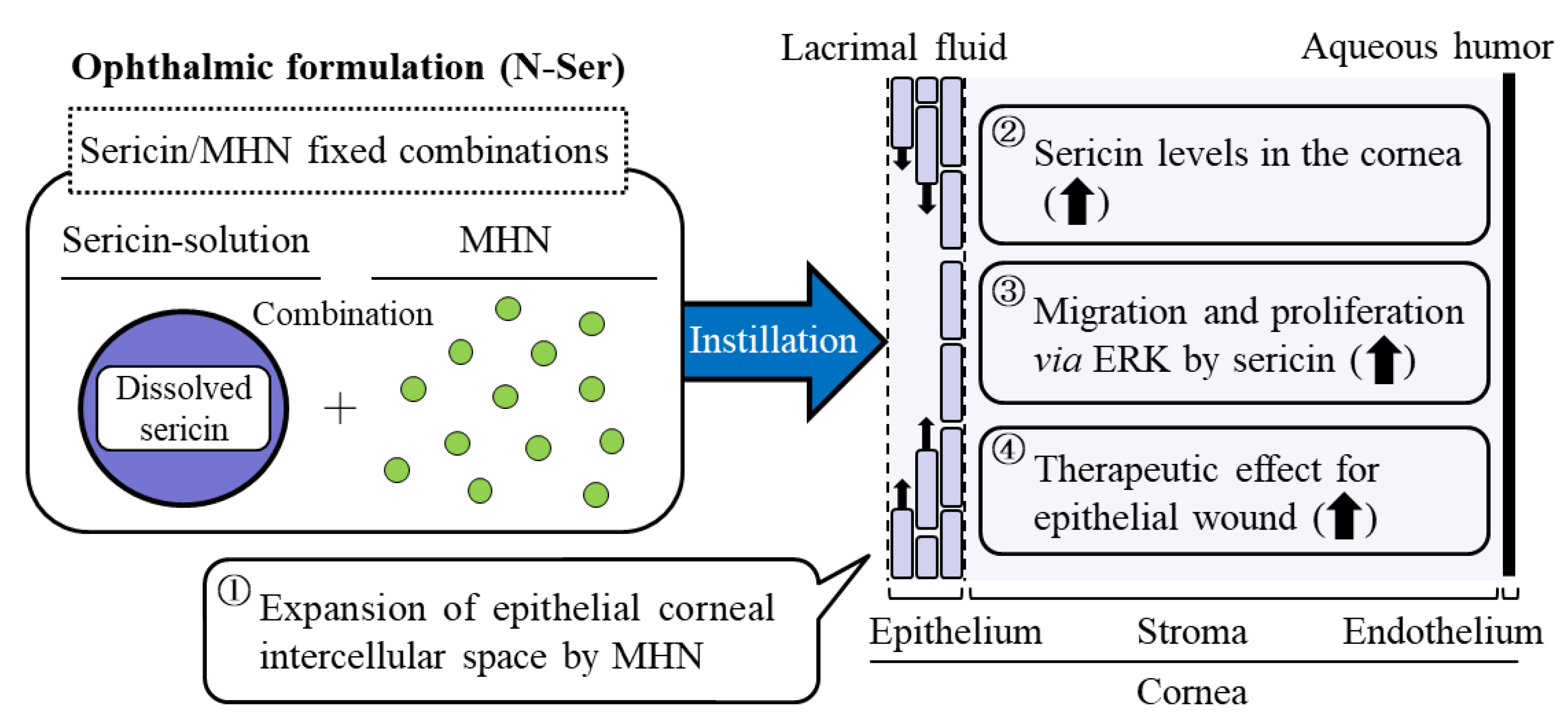 Nanomaterials | Free Full-Text | Therapeutic Potential of a