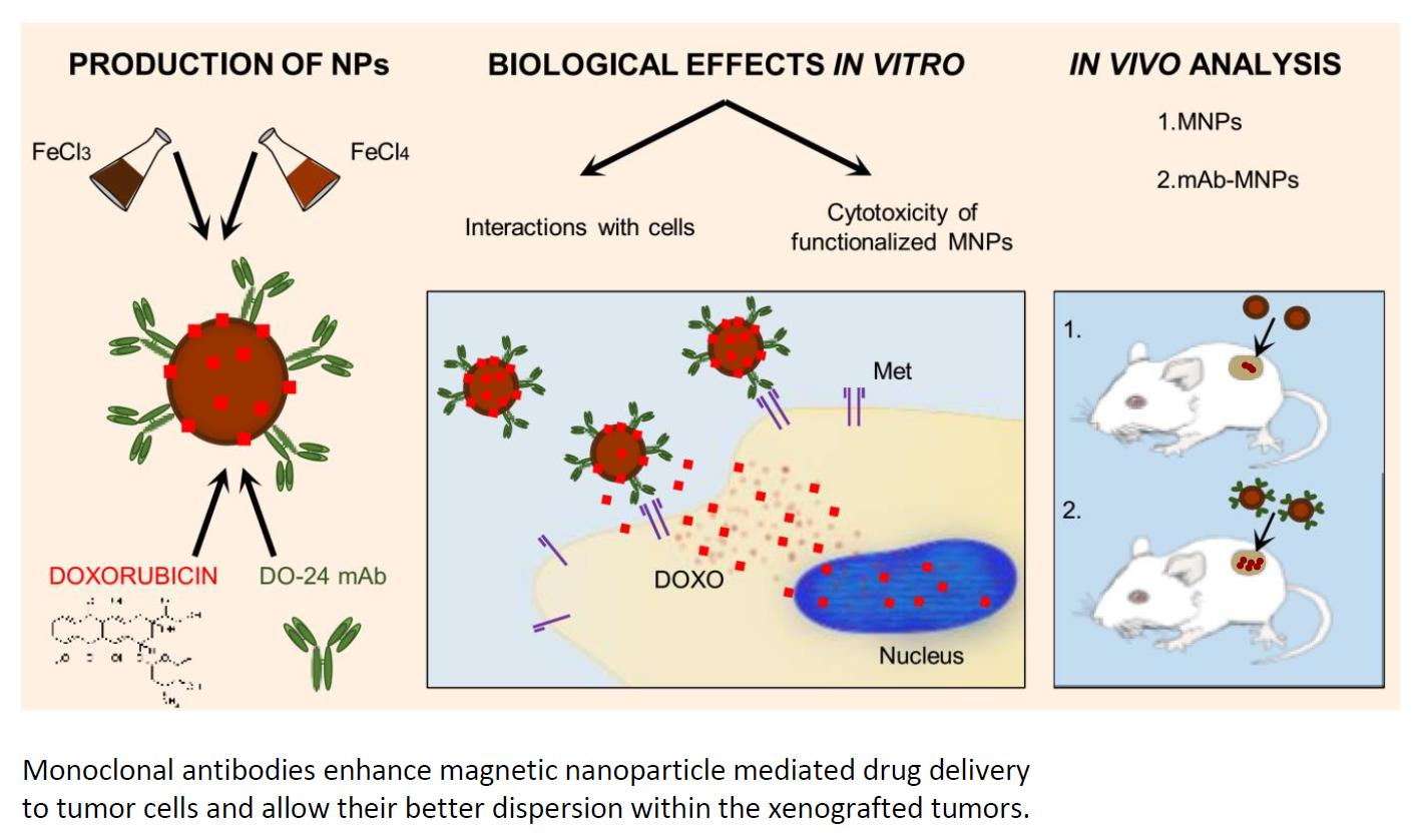 nanomaterials 09 ag