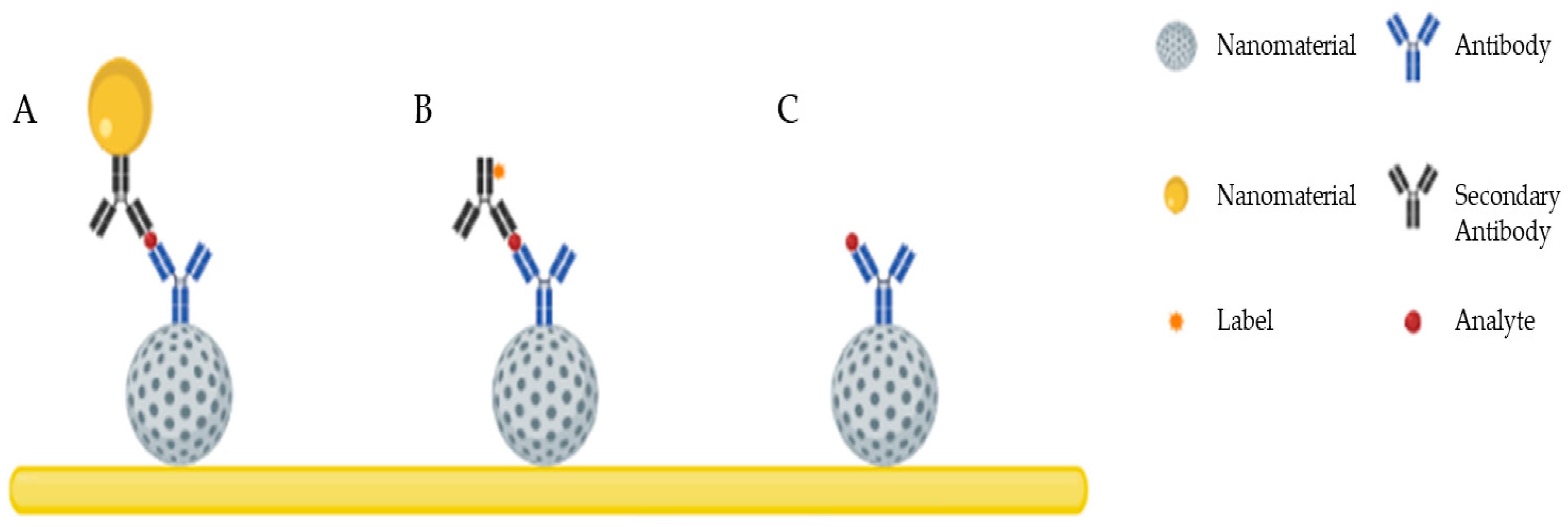 Nanomaterials 09 01663 g001