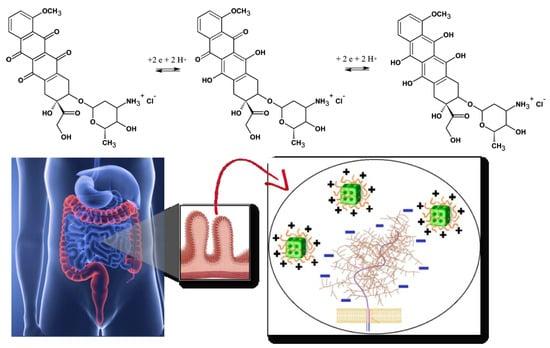 Nanomaterials 10 00963 g002 550