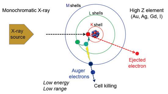 Nanomaterials 10 01341 g001 550