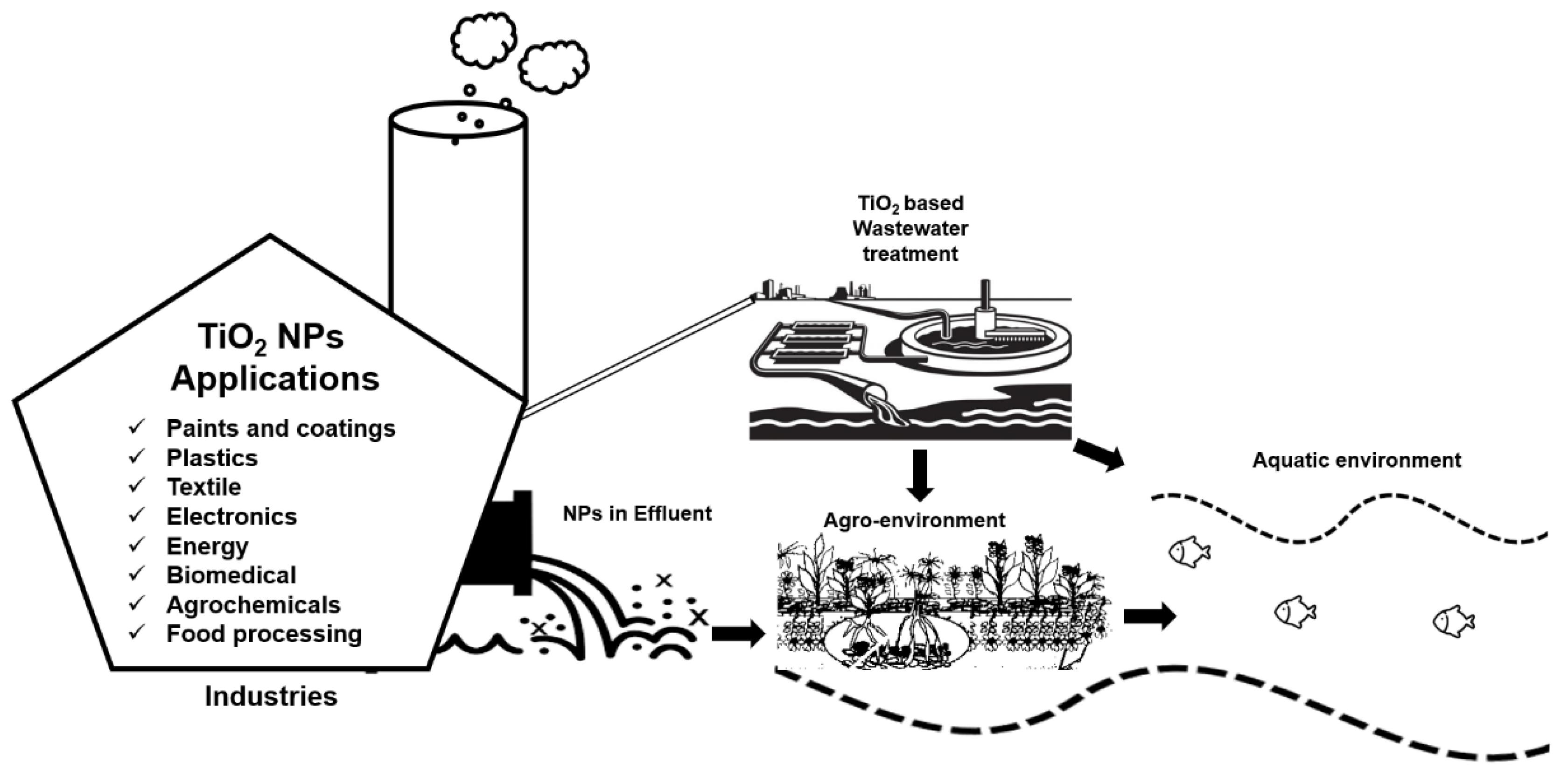 Nanomaterials 10 01469 g001