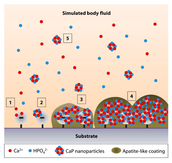 Nanomaterials 10 02162 g001 550
