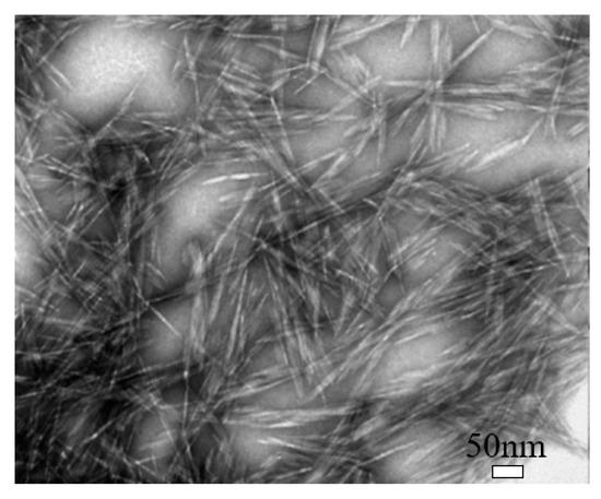 Nanomaterials 10 02476 g002 550