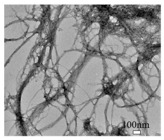 Nanomaterials 10 02476 g003 550