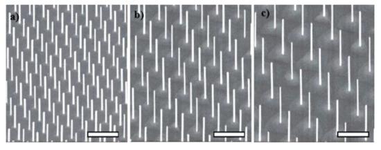 Nanomaterials 11 02079 g003 550