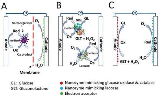 Nanomaterials 11 02116 g001 550