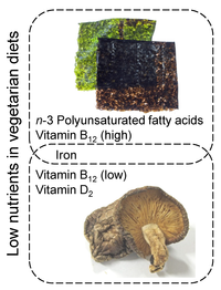 Nutrients 06 01861 g004 200