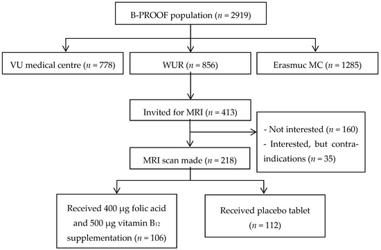Nutrients Special Issue B Vitamins And One Carbon Metabolism