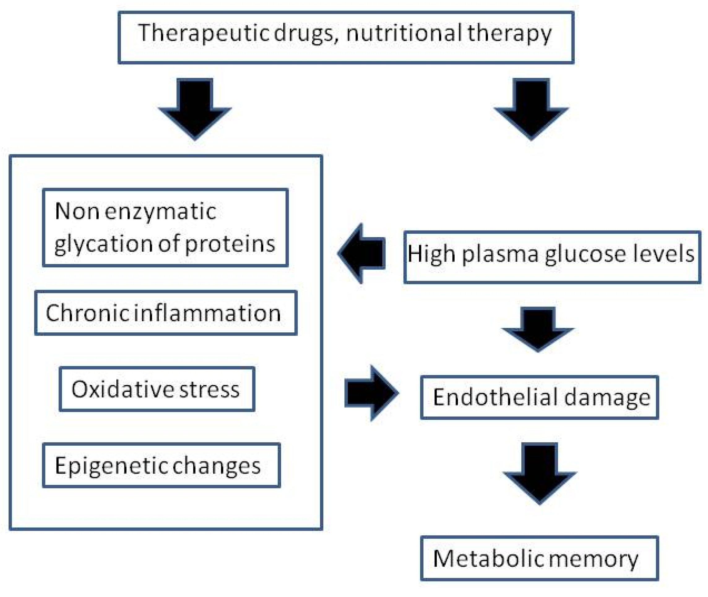 """Nutrients   Free Full-Text   The """"Metabolic Memory"""" Theory"""