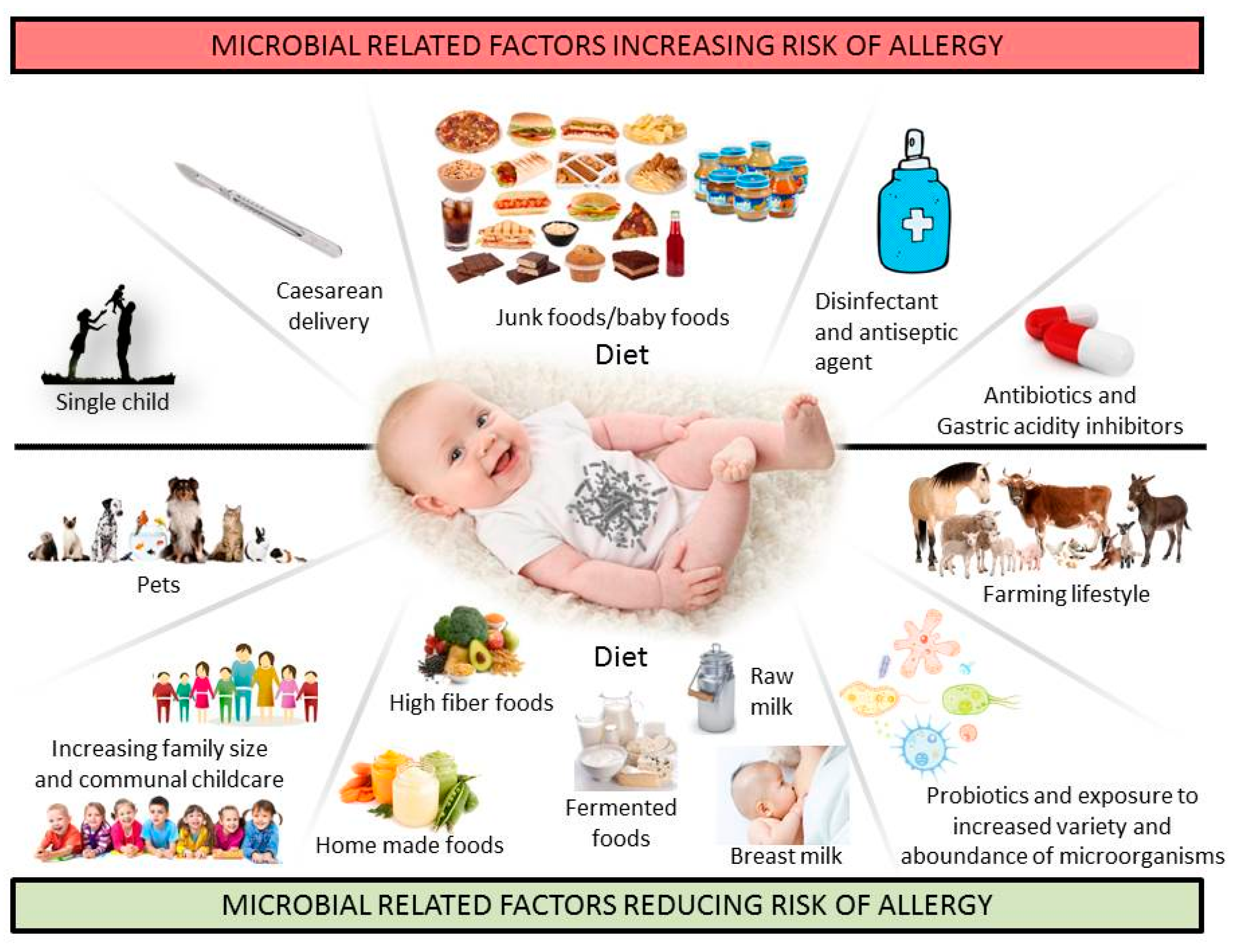 Nutrients Free Full Text Gut Microbiota As A Target