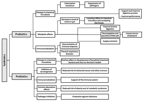 Effects of Probiotics, Prebiotics, and Synbiotics on Human Health