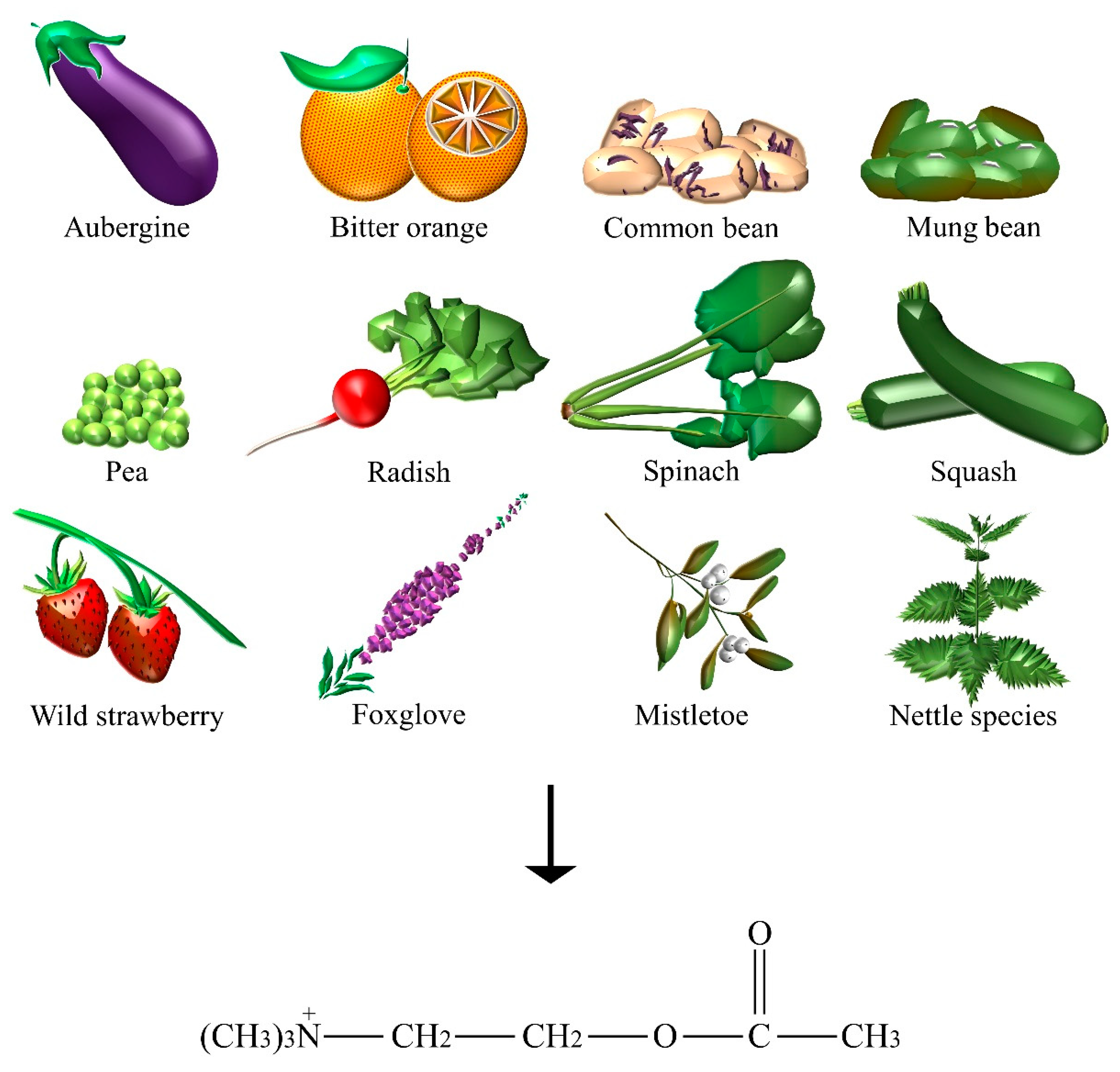 Nutrients 10 00591 g001