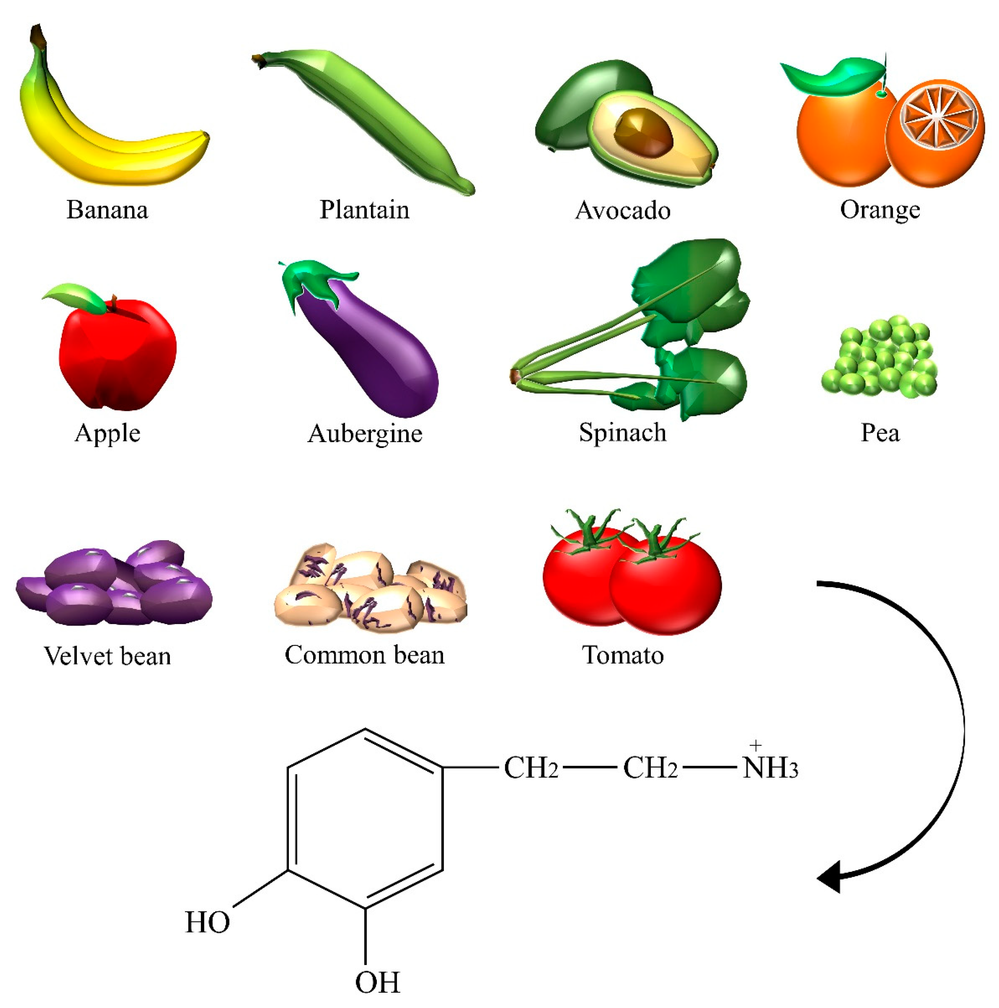Nutrients Free Full Text Dietary Neurotransmitters A Narrative Review On Current Knowledge Html