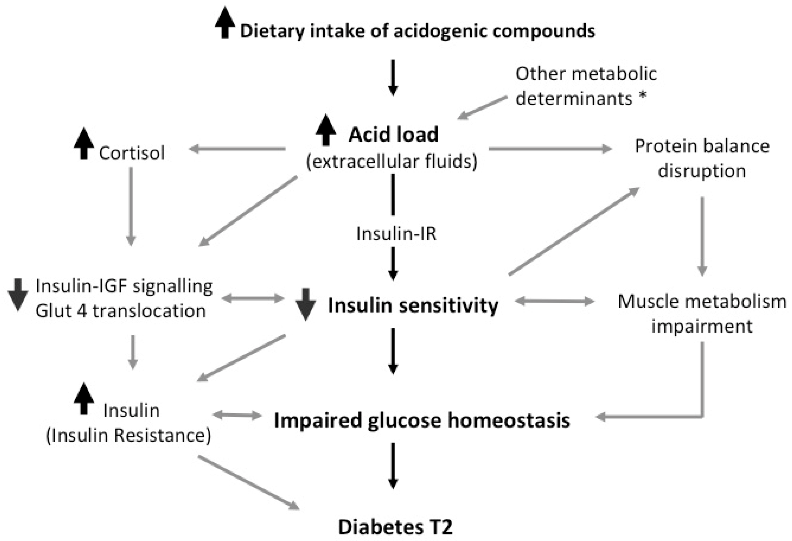 Nutrients Free Full Text Insulin Sensitivity And Glucose