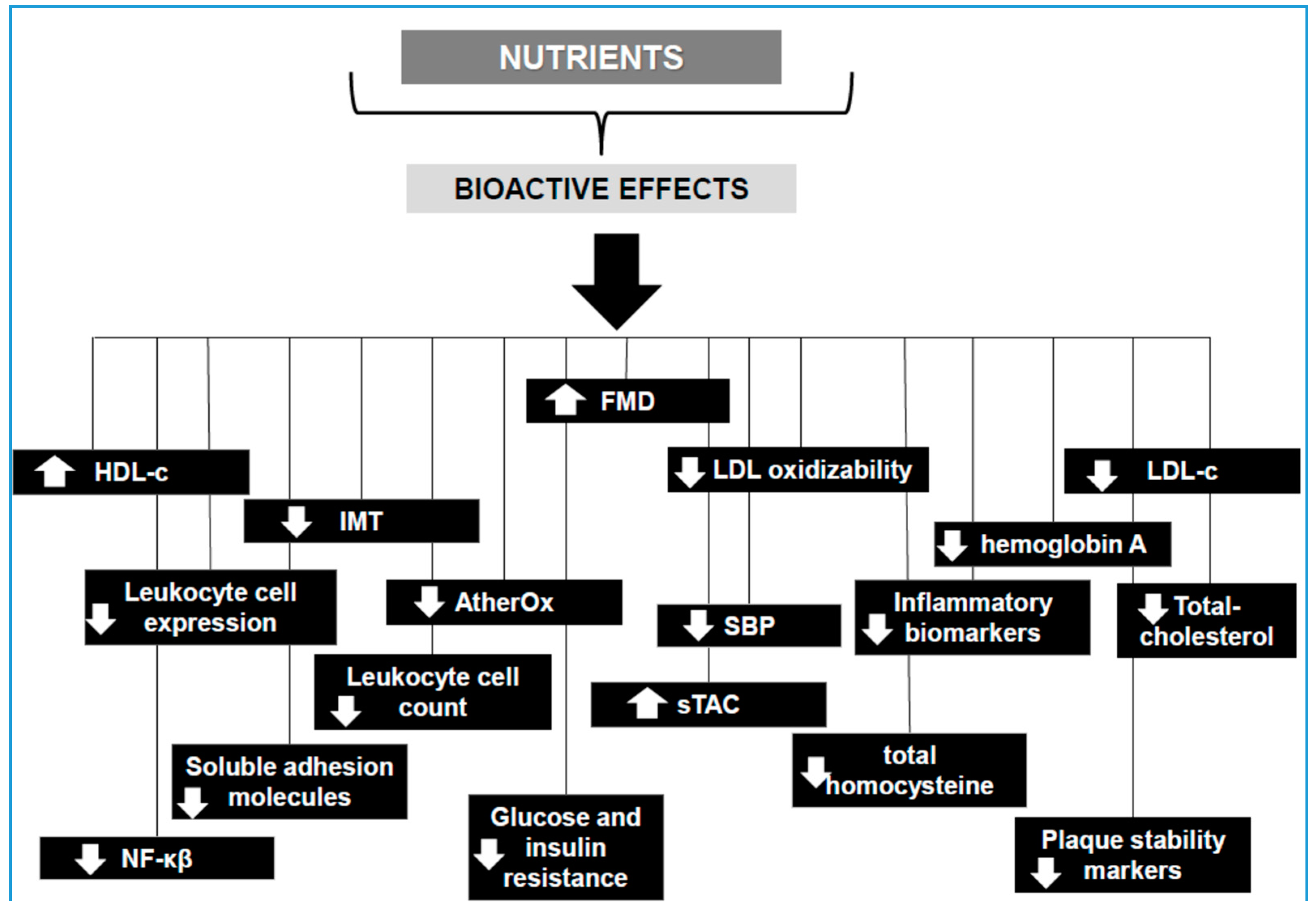 Nutrients 10 01630 g001