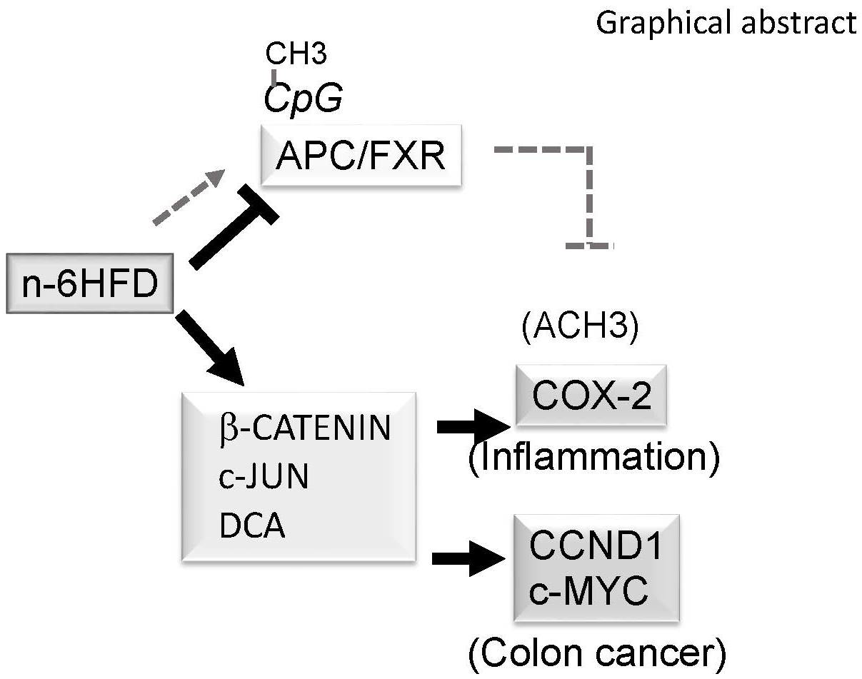 Nutrients Free Full Text N 6 Linoleic Acid Induces Epigenetics Alterations Associated With Colonic Inflammation And Cancer
