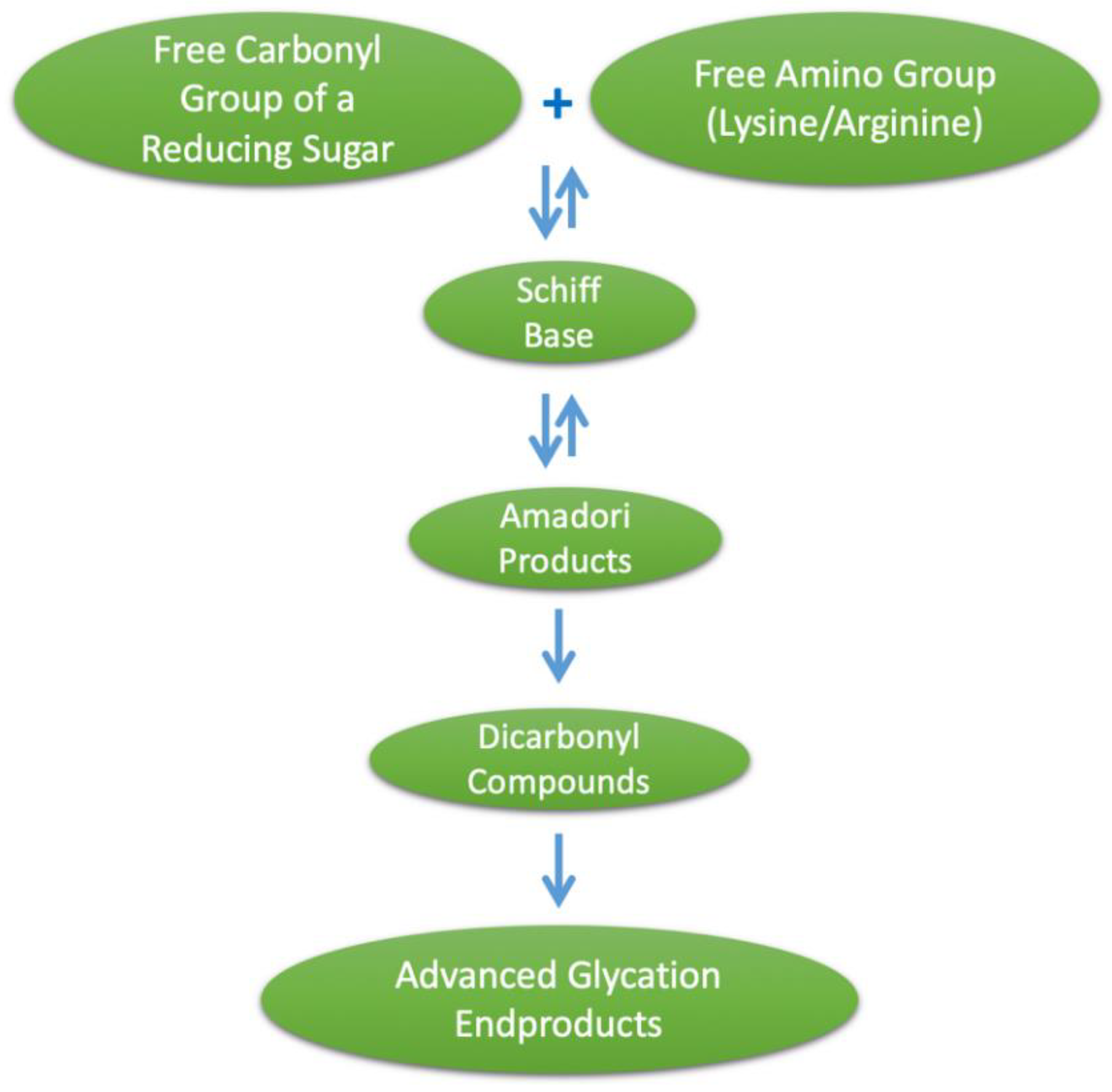 Nutrients | Free Full-Text | Dietary Advanced Glycation End Products