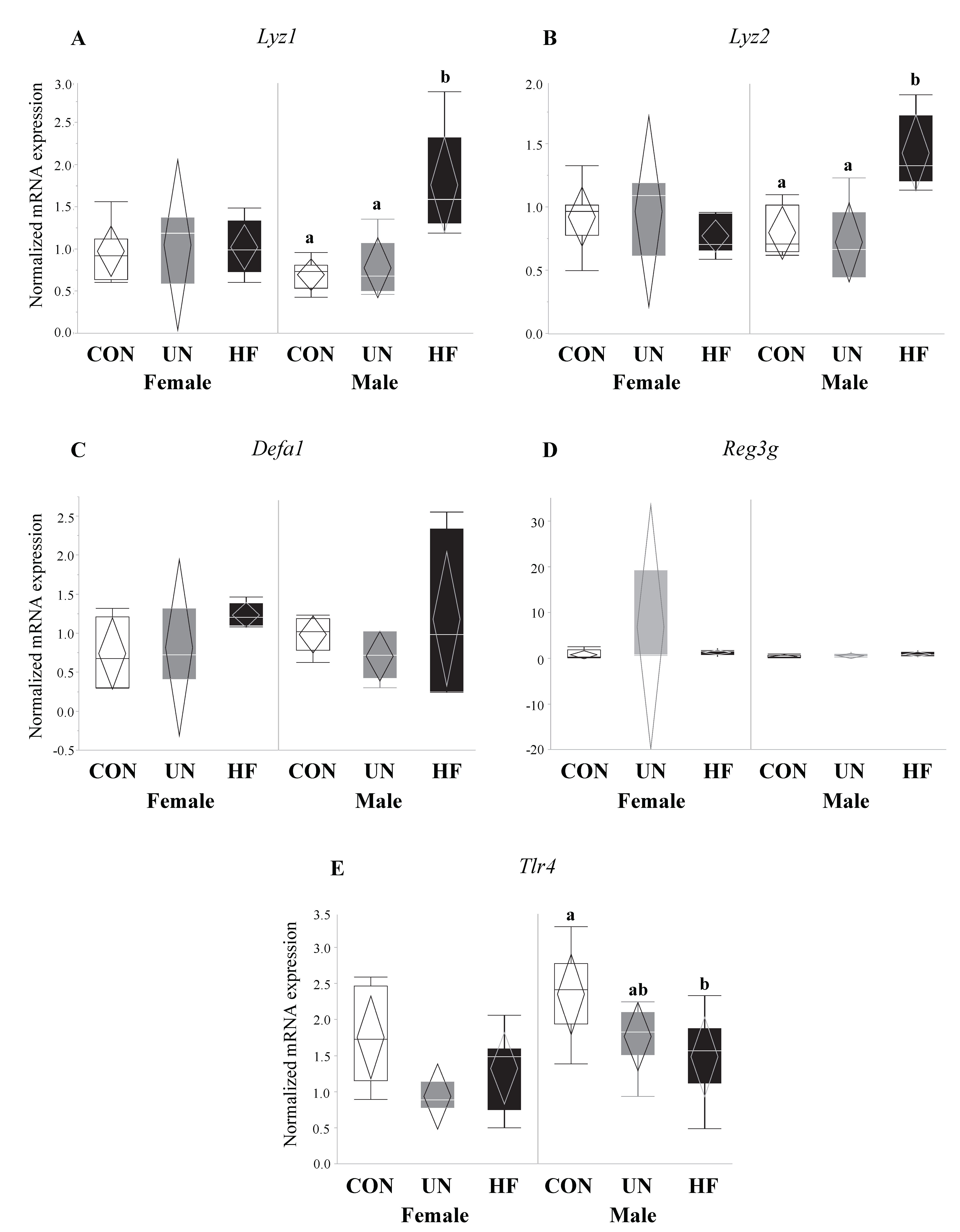 Nutrients   Free Full-Text   Impact of Maternal Malnutrition