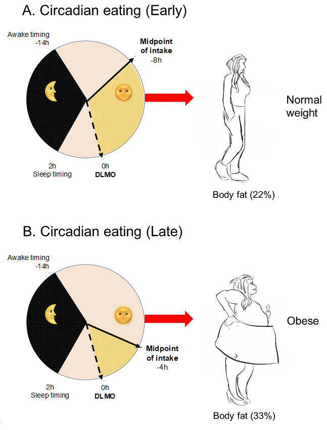 Nutrients Free Full Text Timing Of Breakfast Lunch And Dinner Effects On Obesity And Metabolic Risk