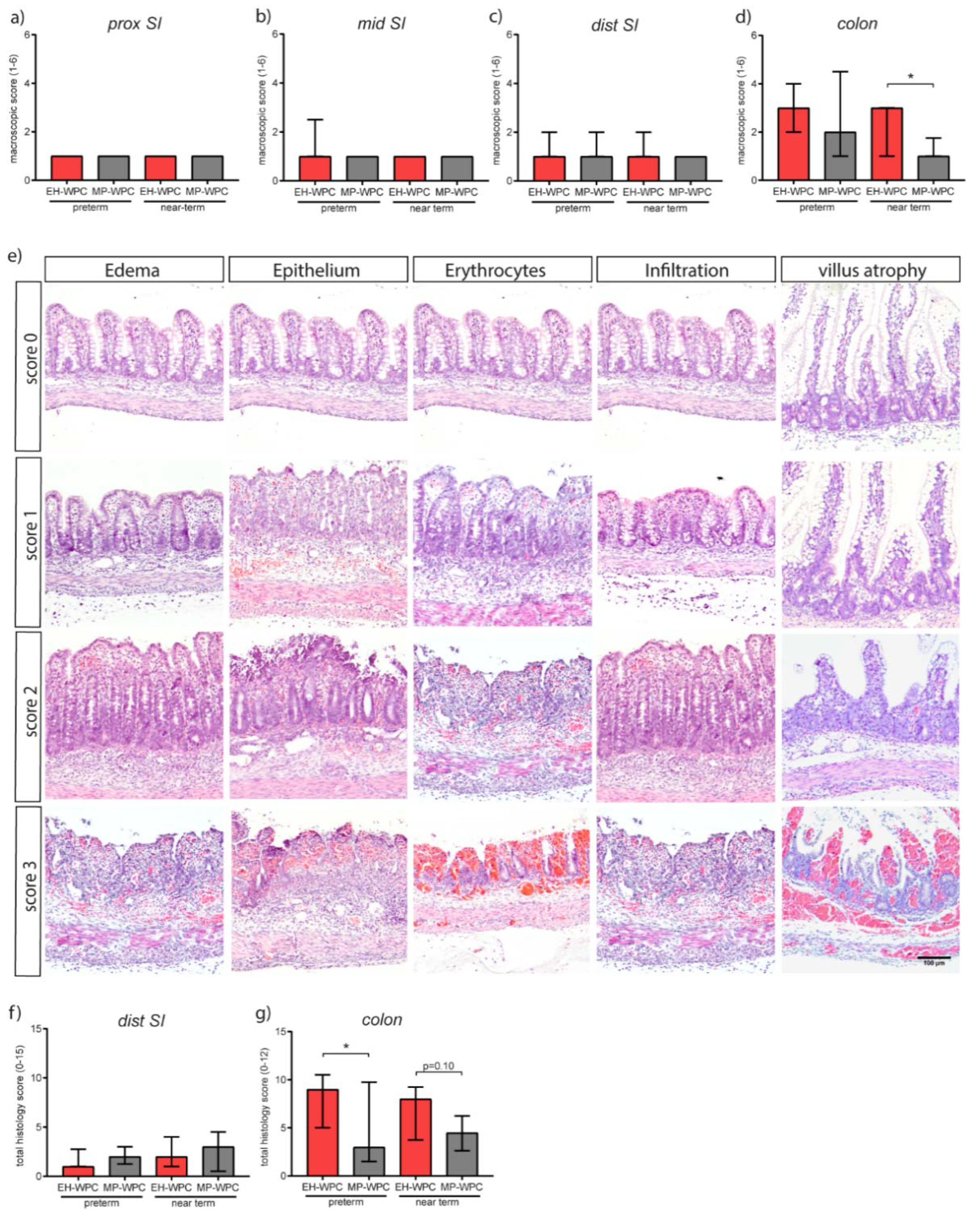 Nutrients Free Full Text Beneficial Effect Of Mildly Pasteurized Whey Protein On Intestinal Integrity And Innate Defense In Preterm And Near Term Piglets Html