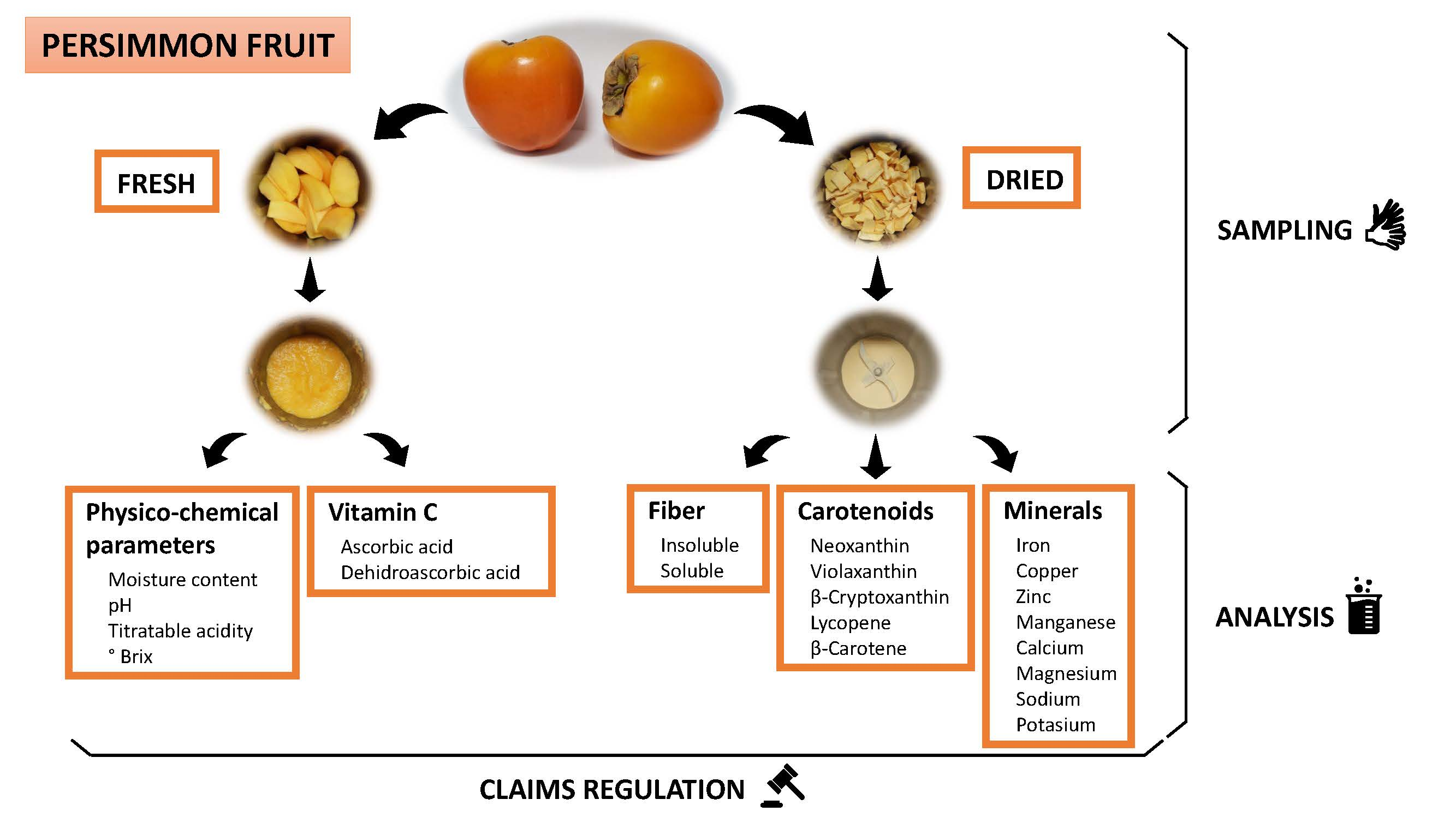 Potential Nutrition and Health Claims