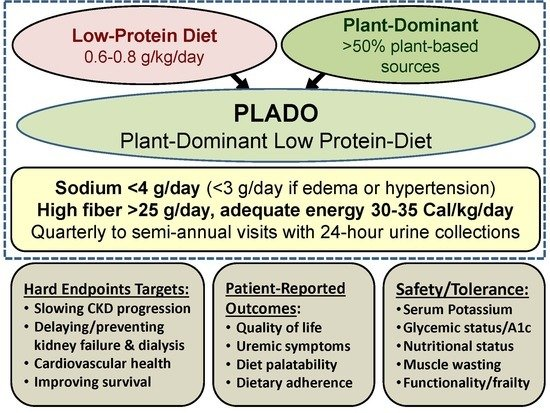 Nutrients Free Full Text Plant Dominant Low Protein Diet For Conservative Management Of Chronic Kidney Disease