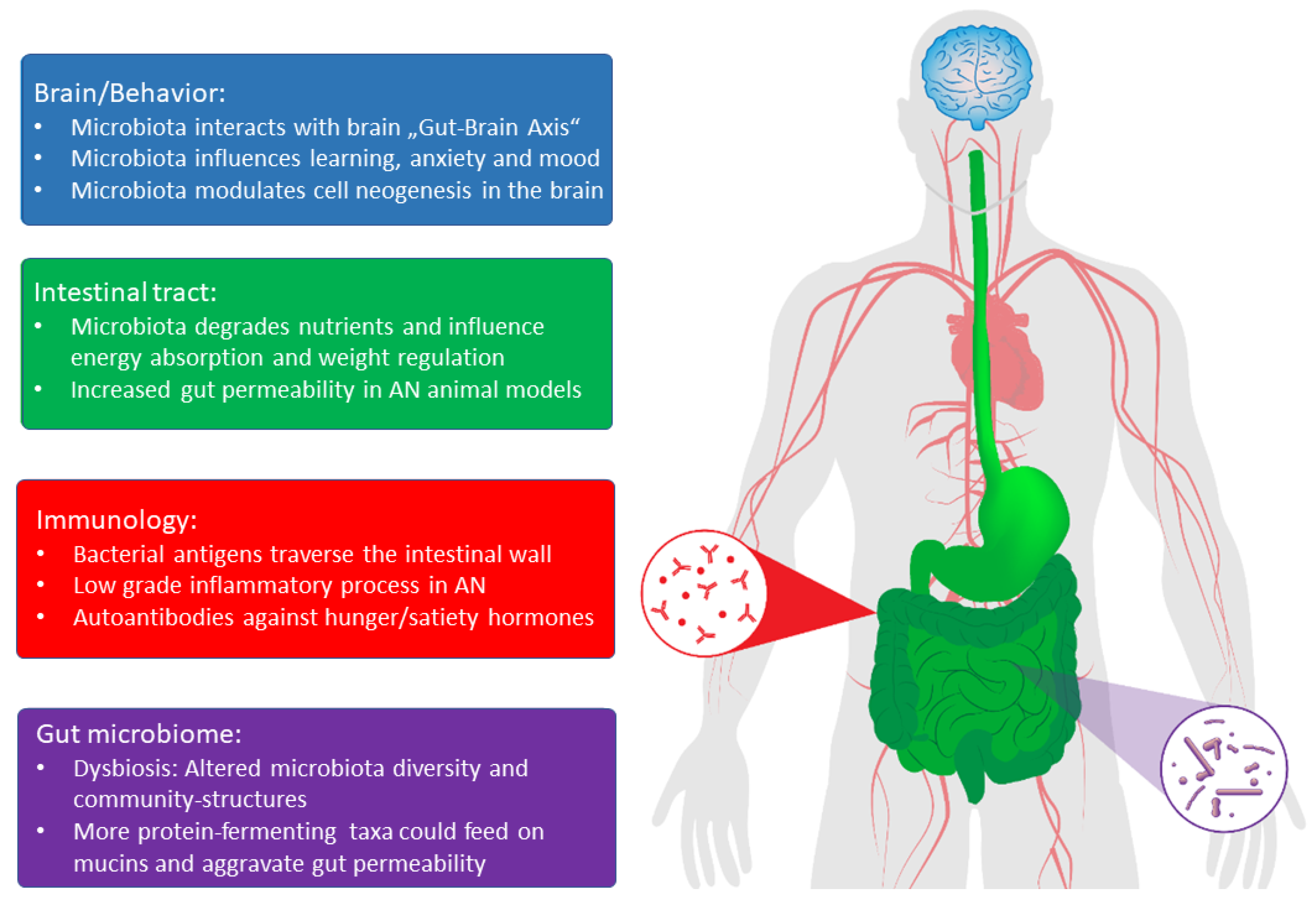 tratament cu viermi pentru tratarea colitei ulcerative ceai curatarea sangelui
