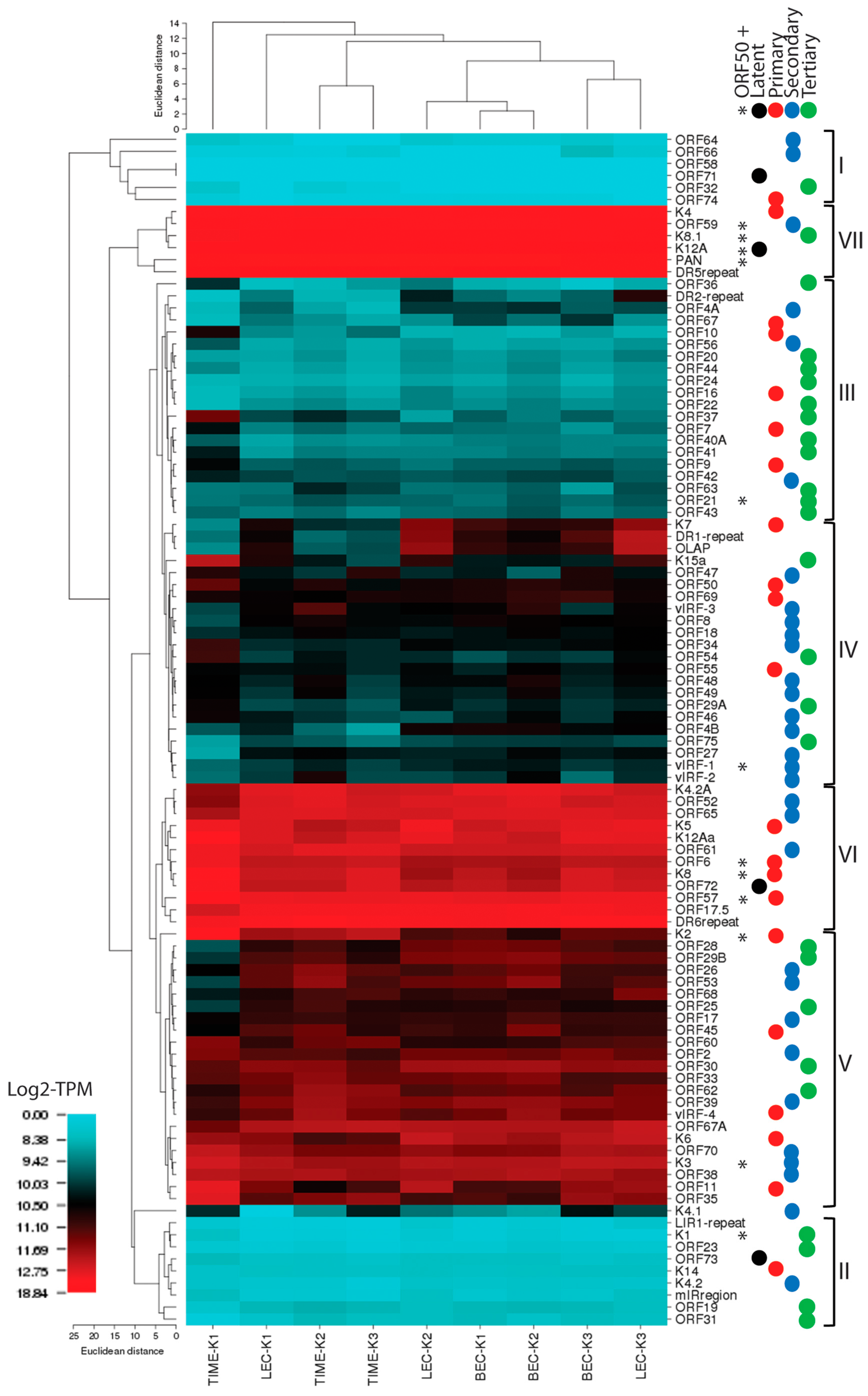 an analysis of the transcription in prokaryote and an analysis of the blood patterns Hemovision: an automated and virtual approach to bloodstain pattern analysis joris p(1), develter w(2), jenar e(3), suetens p(4),.