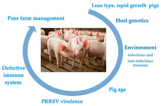 Pathogens 10 01073 g001 550