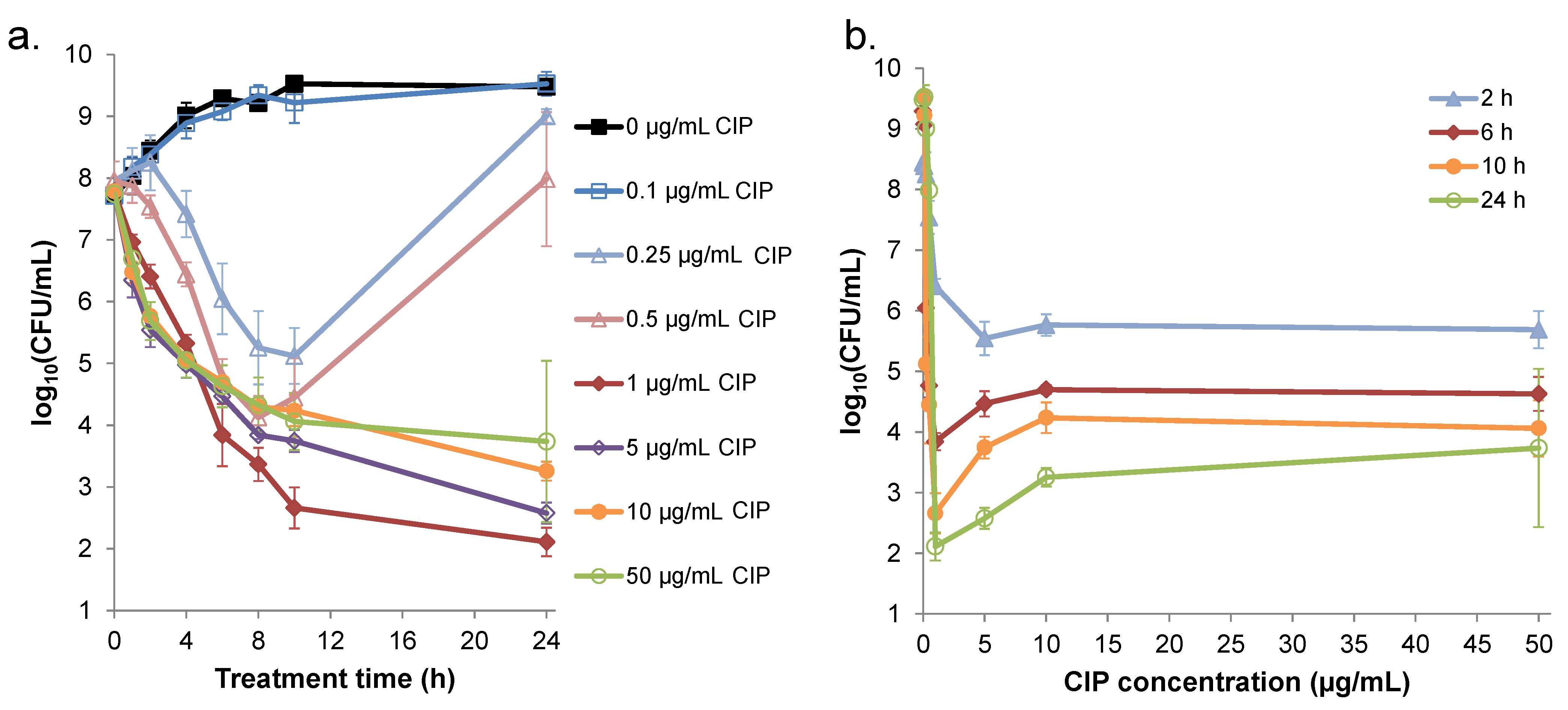 Bioequivalence Studies of 250 mg Ciprofloxacin Tablets in ...