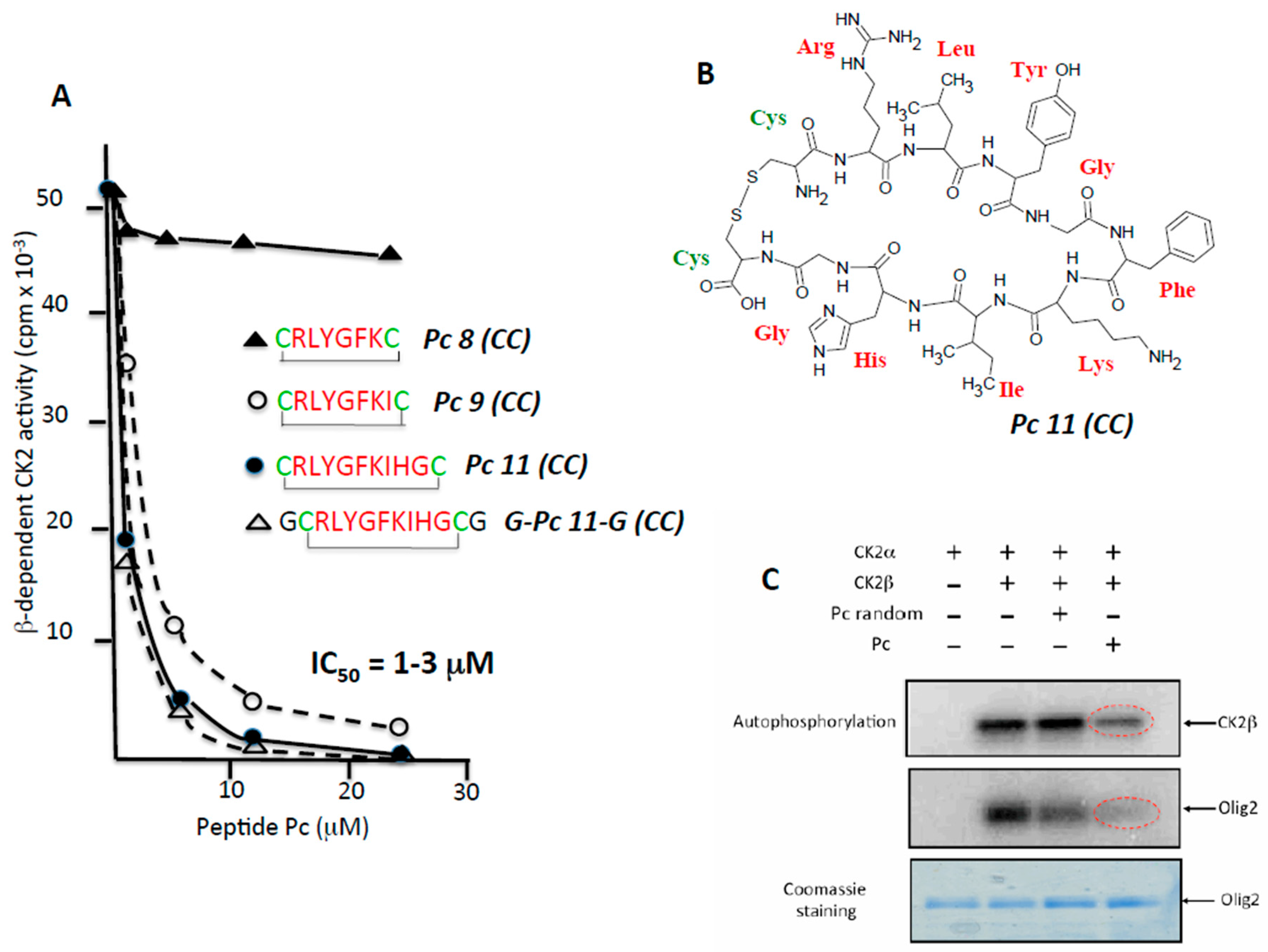 Pharmaceuticals | Free Full-Text | In Search of Small Molecule