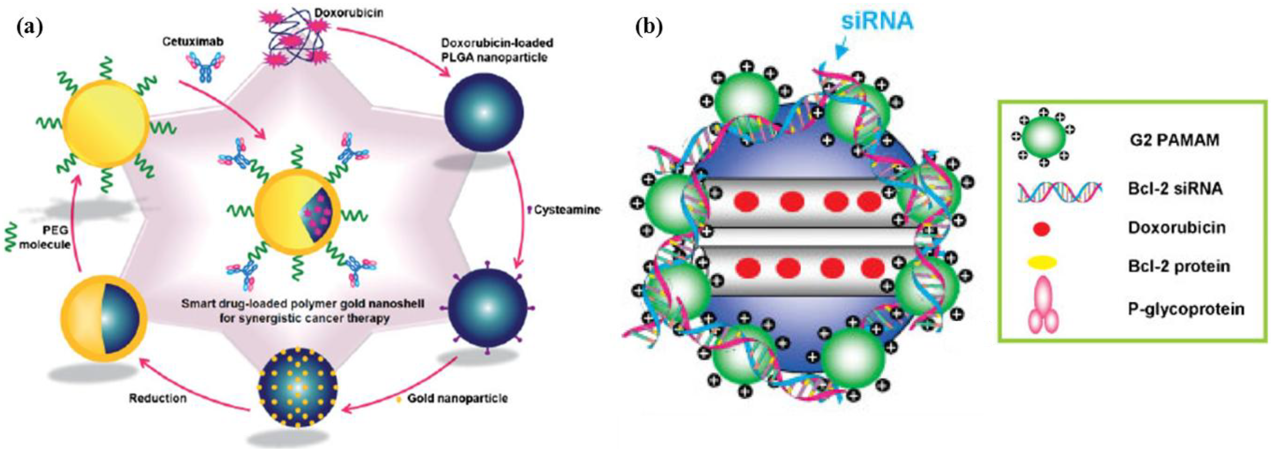 Pharmaceutics   Free FullText   Delivery of Cancer