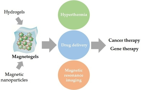 Pharmaceutics | Free Full-Text | Magnetogels: Prospects and