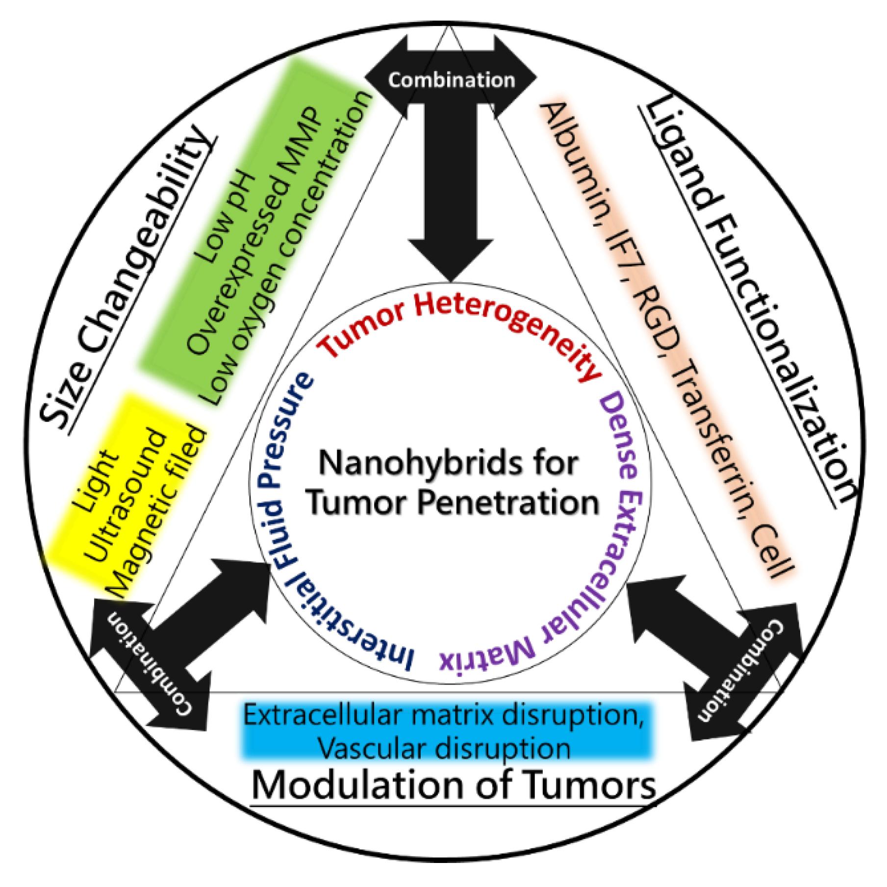 Pharmaceutics Free Full Text Functional Nanoparticles For Tumor Schematics Depot Tm Ultrasonic Switch Circuit 10 00193 G002