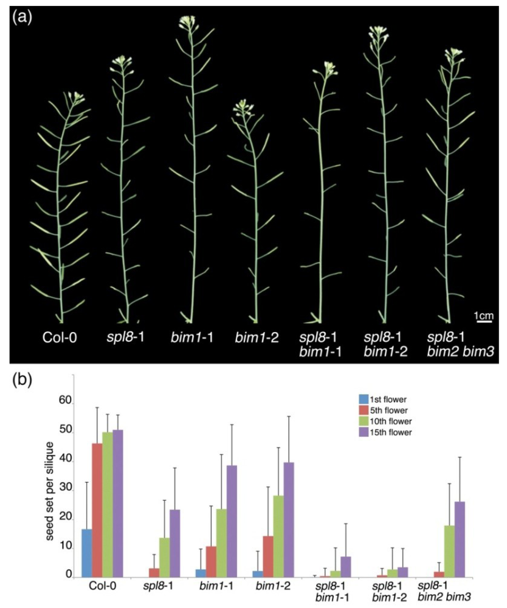 Plants | Special Issue : Developmental Biology and Biotechnology of